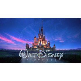Disney termékek